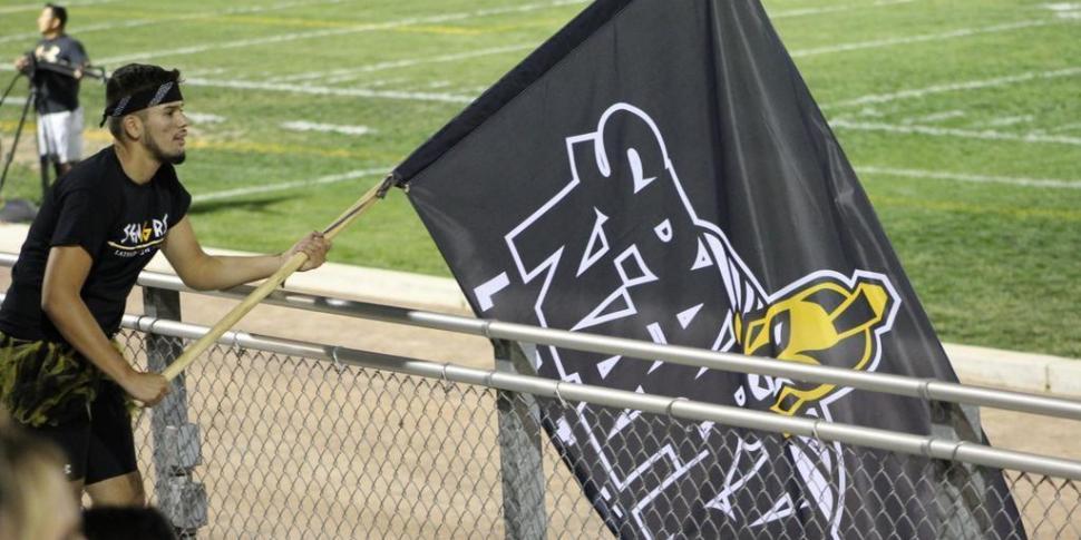 Field Runner Flag
