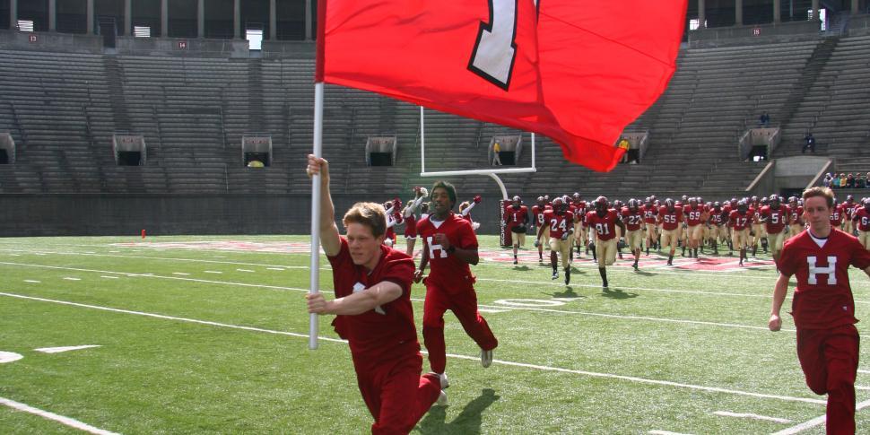 Field Runner Flags | BigSigns com