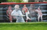Softball Fence Graphics